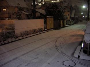 雪だ.jpg